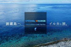 スペシャルオレンジ御蔵島ガイドサービス